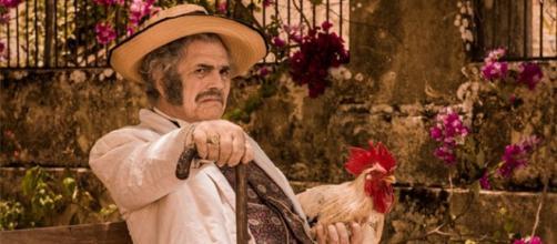 Resumo da novela Velho Chico da TV Globo