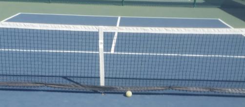 Smaller than tennis, larger than ping pong