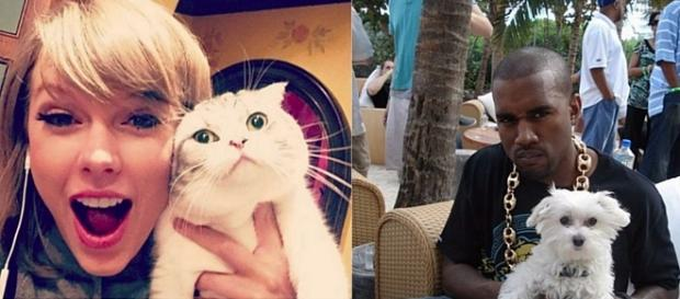 Taylor Swift - cat vs Kanye West - dog