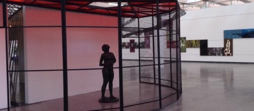 Galería principal del MUCA campus CU
