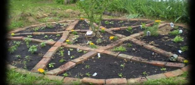 Creați-vă propria grădină magică