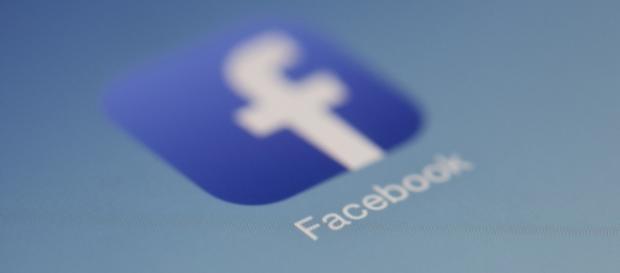 Vice presidente di Facebook, Dzodan, arrestato