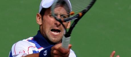 Djokovic tem quase o dobro de pontos sobre Murray