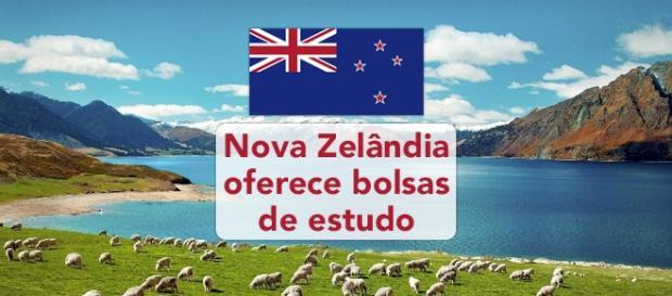 Bolsa de estudos na Nova Zelândia - Foto: Reprodução Nomadsworld
