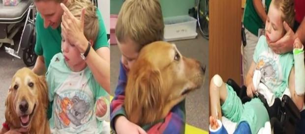 Cachorro ajudou Caleb à voltar a viver