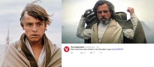 Mark Hamill Says Luke Skywalker May Be Gay