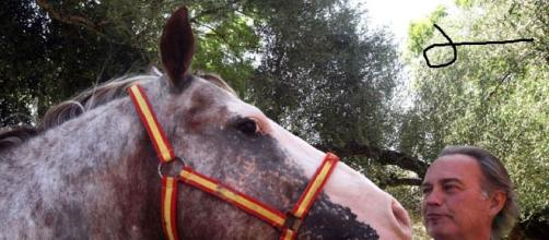 Bertín: caballos y banderita de España. ¿Y el dinero?