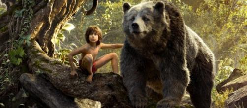 La interacción del niño humano con los animales es bien lograda