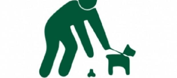 No recoger la heces de la mascota es una infracción grave