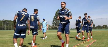Palmeiras está pronto para encarar o São Bernardo