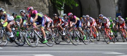 Il gruppo affronta una curva lungo le strade del Giro d'Italia