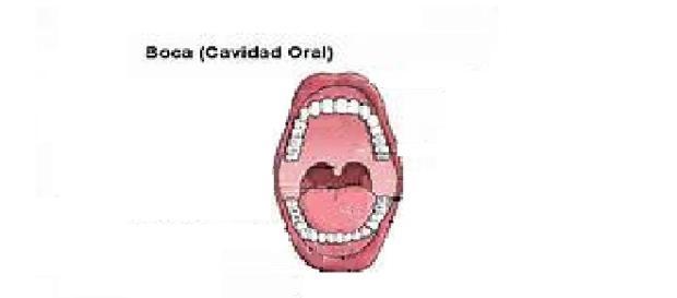 síndrome de boca ardiente, o síndrome de ardor bucal