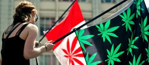 Moça segura bandeiras alusivas à maconha durante manisfestação em Toronto.