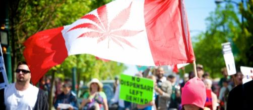 Recreational weed may become legal in Canada sometime next year. [Photo: Cannabis Culture/Flickr]