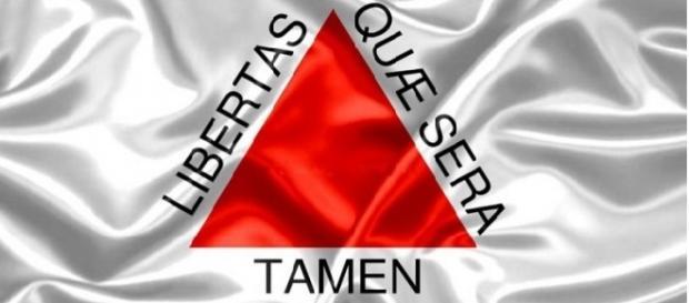 A bandeira do Estado de Minas Gerais.