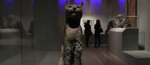 Urna de gato de la muestra de Cleopatra. Foto: JEXA