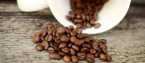 El café, nuestro aliado para adelgazar