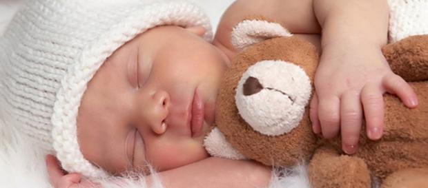 Bebé durmiendo plácidamente con un peluche