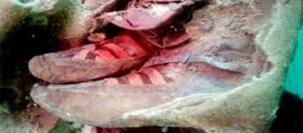 Calzado de la momia encontrada