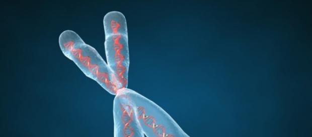 La enfermedad de Huntington es causada por un defecto genético en el cromosoma N.° 4.