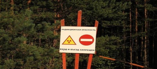 Viajes turísticos a la central de Chernóbil