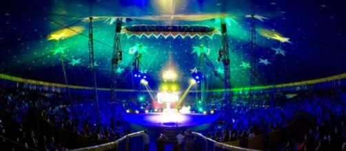 Circo está em Pernambuco desde 23 de outubro de 2015.