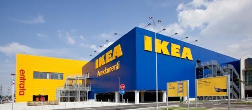 Nuove assunzioni all'IKEA nei prossimi tre anni