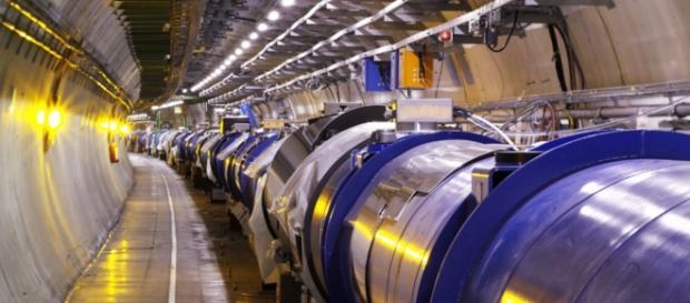 Una comadreja muerde un cable del gran Acelerador de Hadrones provocando una suspensión semanal de sus funciones