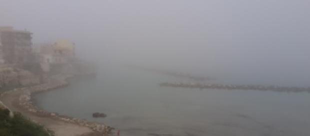 Lupa salentina e nebbia fitta sul Salento.