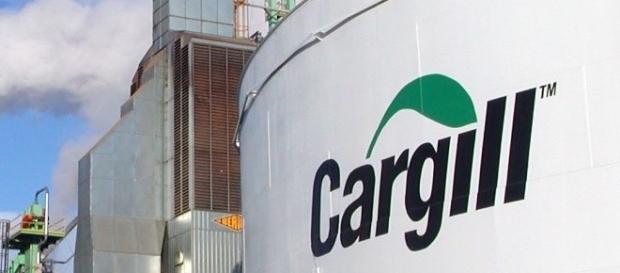 Mais de 100 vagas de estágio na Cargill - Imagem: Divulgação