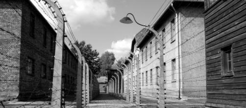 Auschwitz, uno de los campos más temidos por los prisioneros