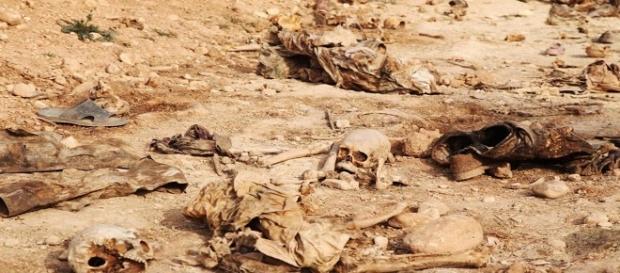 Cráneos y huesos localizados en una de las fosas comunes