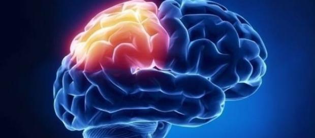 falta de sueño provoca cambios en el cerebro