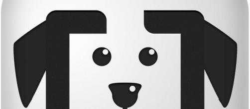 Iniciativa de adoção de animais é incentivada pelo Uber