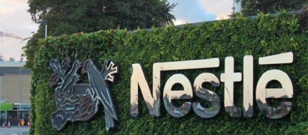 Garanta seu futuro profissional, venha para a Nestlé!