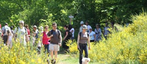 Une trentaine de randonnées à thème sont proposées lors du Festival.