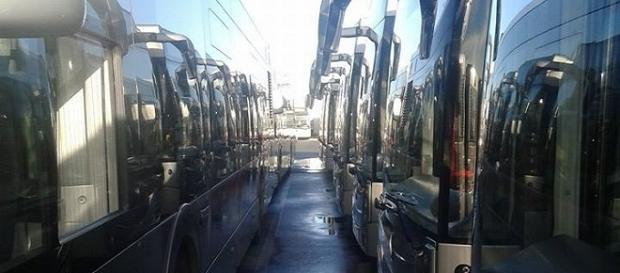 Autobus del servizio Roma TPL incolonnati