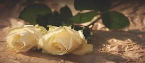 L'omicidio di Yara Gambirasio e la richiesta di ergastolo per Bossetti