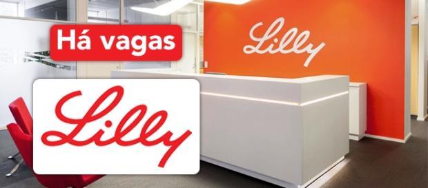 Vagas Lilly - Foto: Reprodução Bolon