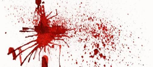 Il sangue degli avvenimenti efferati di Parma