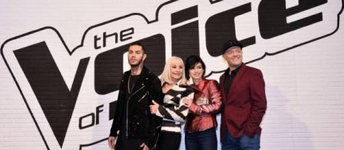 Vincitore The Voice 2016: il favorito.