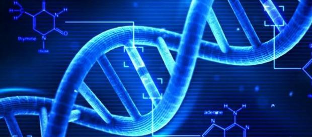 Creare genoma umano in laboratorio