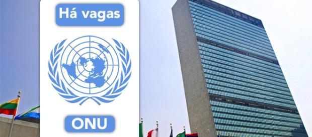 Vagas para trabalhar na ONU. Foto: Reprodução Saodomingosinformado.