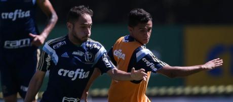 Régis em disputa com Érik (Foto: Cesar Greco/Ag Palmeiras)
