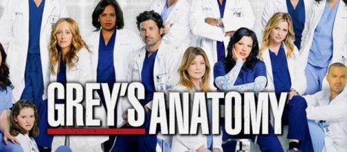 O elenco de Anatomia de Grey regista mais uma baixa no final da 12ª temporada.