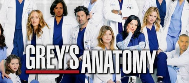 O elenco de Anatomia de Grey regista mais uma baixa no final da 12ª temporada.