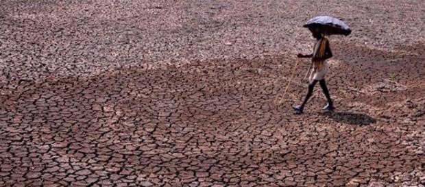 Un hombre pasea en la provincia de Rajastán, al norte de la India