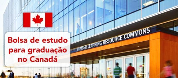 Estude e faça a sua graduação no Canadá - Foto: Reprodução Humber