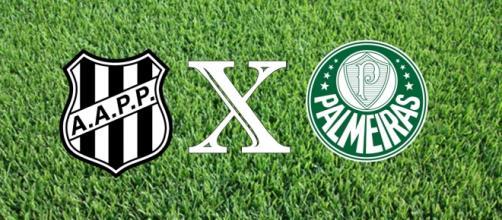 Ponte Preta x Palmeiras jogam pelo Brasileirão