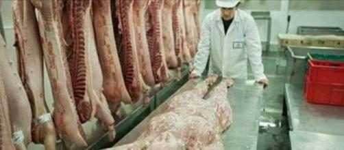 Human meat story. Image via public domain Facebook
